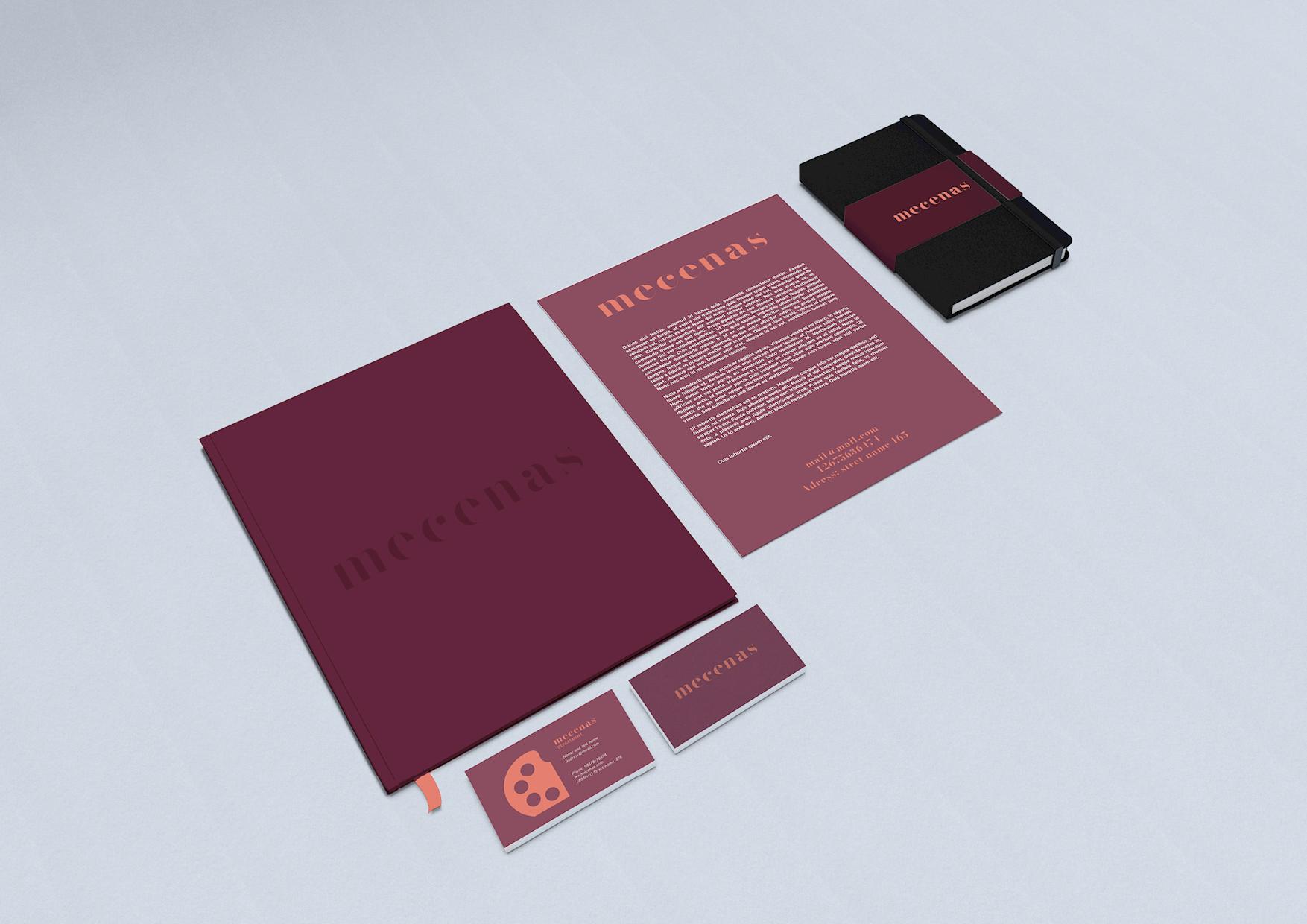 Mecenas Development Guide FINAL DRAFT17