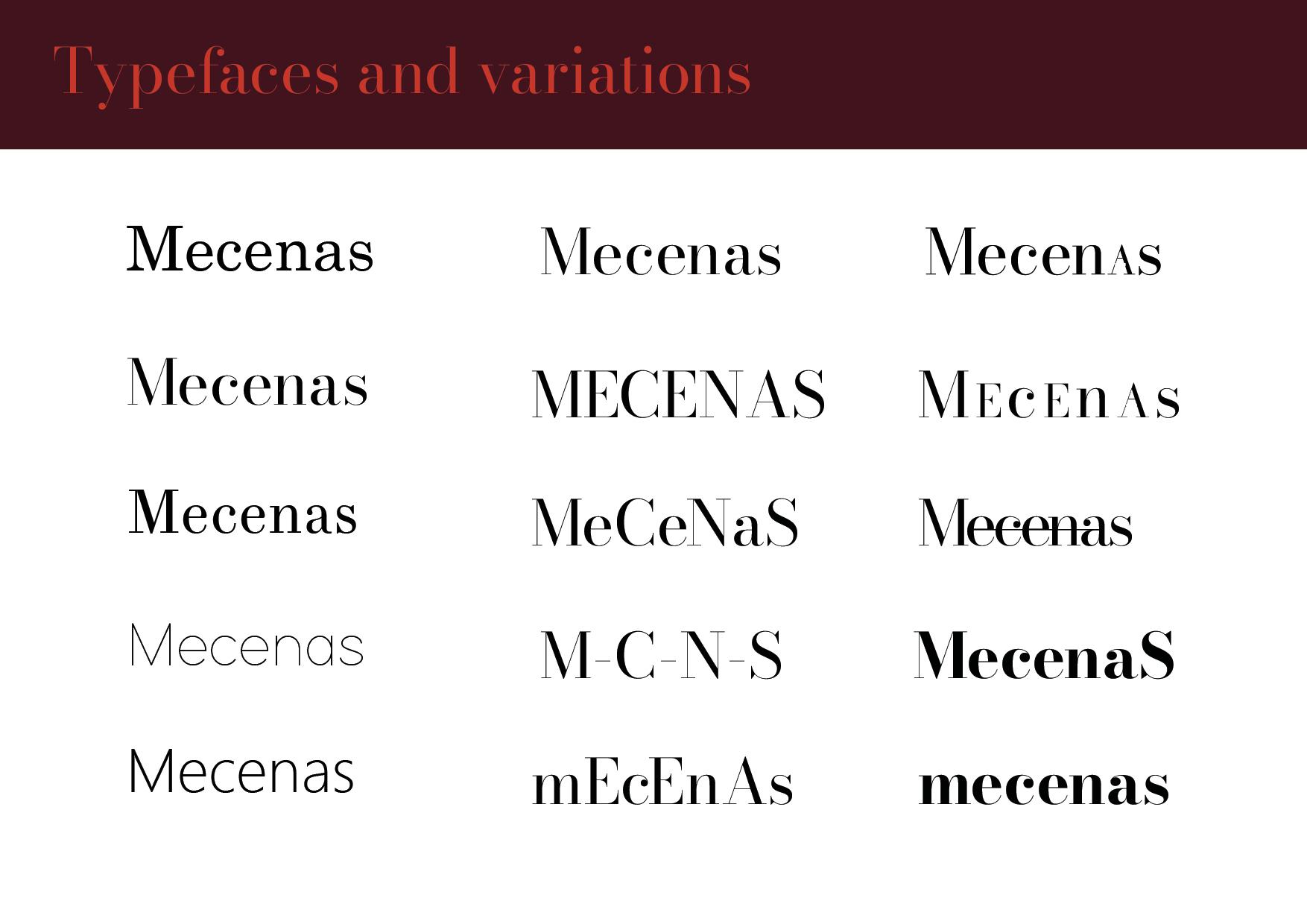 Mecenas Development Guide FINAL DRAFT9